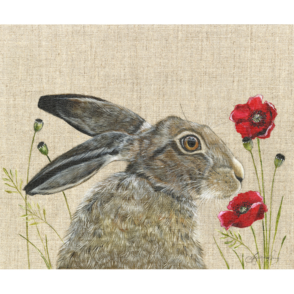hare-poppy-canvas_website_1403206165