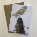 birds-cards-barn-owl-7x5