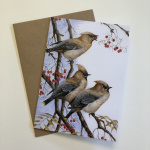 birds-cards-waxwings-earful-7x5