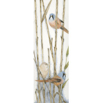 birds-fine-art-prints-bearded-tits-resting-in-the-reeds-suzanne-perry-art-068