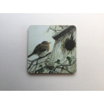 coaster-birds-robin-residence-2-suzanne-perry-art