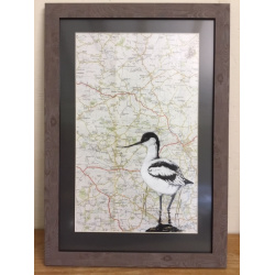 birds-avocets-map-suffolk-suzanne-perry-art-m1
