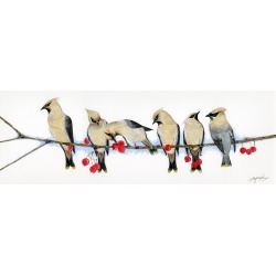 birds-fine-art-prints-waxwings-suzanne-perry-art-059_1022490913