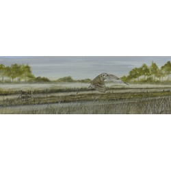birds-of-prey-paintings-short-eared-owl-misty-meadow-suzanne-perry-art-198