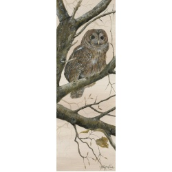 birds-of-prey-paintings-tawny-owl-at-dusk-suzanne-perry-art-144