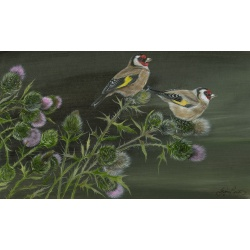 garden-birds-paintings-goldfinches-thistles-charm-suzanne-perry-176