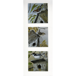 garden-birds-paintings-nesting-threes-suzanne-perry-art-275