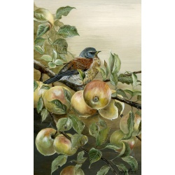 visiting-birds-paintings-fieldfare-autumn-fayre-suzanne-perry-107