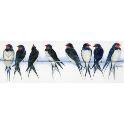 visiting-birds-paintings-swallows-united-suzanne-perry-art-023